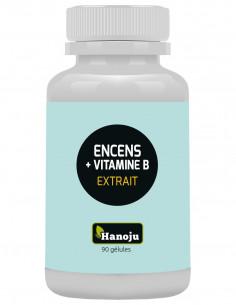 encens acides boswelliques & vitamine B 90 gélules